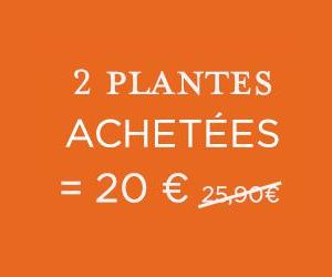 2 plantes achetées = 20€