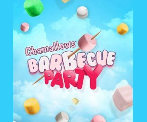 Chamallows : Des barbecues BBQ Weber