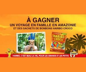 tf1 un s 233 jour en famille en amazonie jeux concours