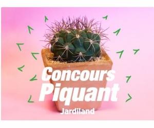 jardiland un cactus jeux concours. Black Bedroom Furniture Sets. Home Design Ideas