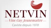 logo Netvin