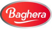 logo Baghera