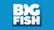 logo Big Fish Games