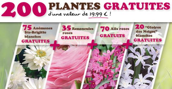 Bon plan 200 plantes gratuites et 10 de r duction d s 30 d 39 achat chez willemse - Plantes et jardins code promo ...