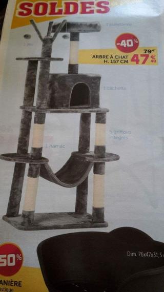 les arbres chats bar. Black Bedroom Furniture Sets. Home Design Ideas